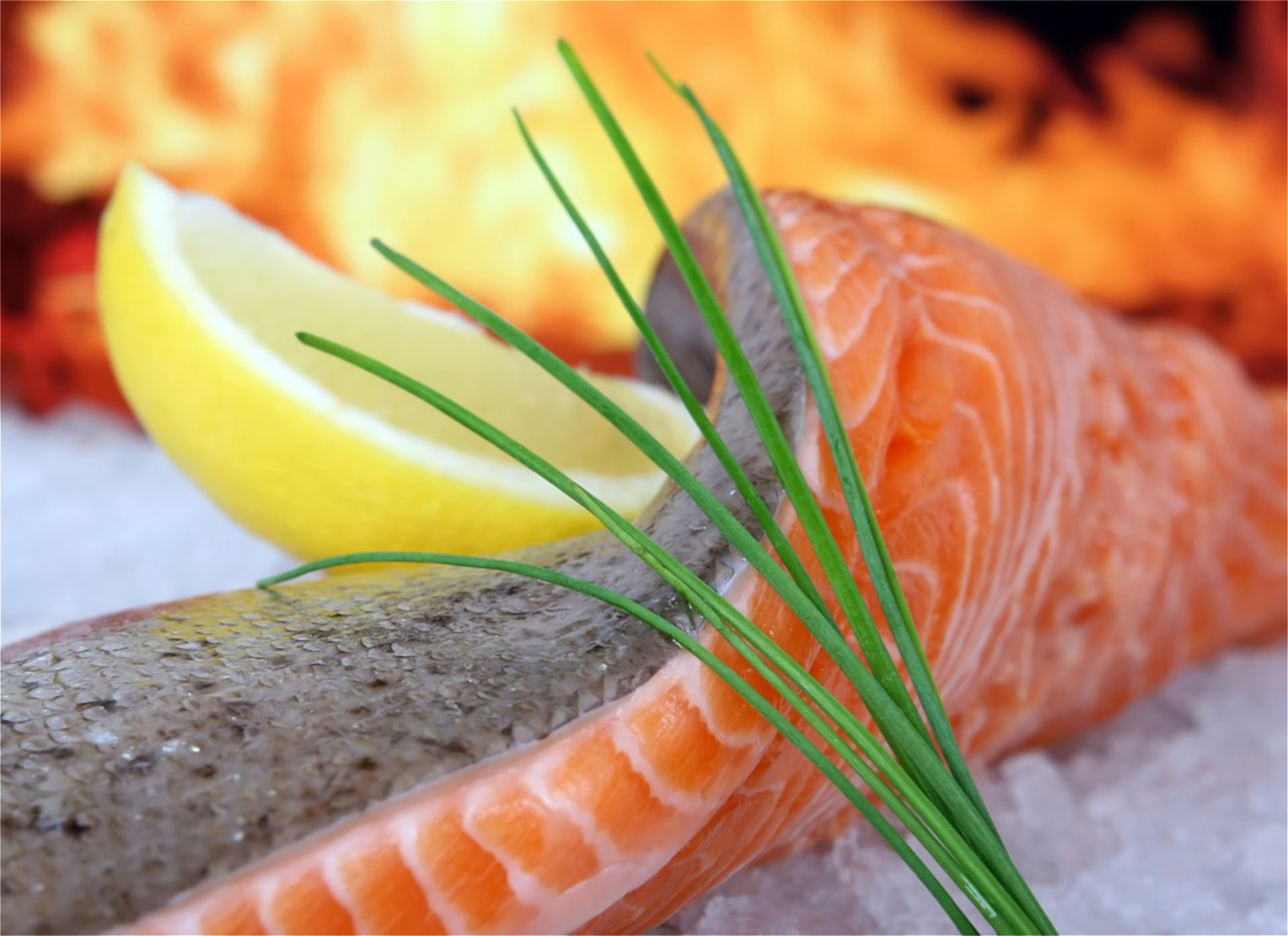 Best Scottish Salmon